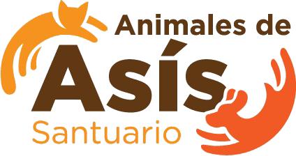 Animales de Asis – Costa Rica